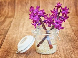 Crafty Ideas: DIY Decor with Creative Containers