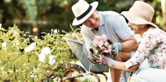 Simple, helpful ways to keep your garden growing strong throughout the summer