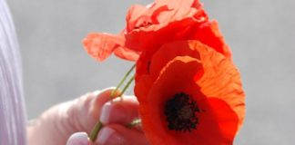 Remember the Fallen and Support the Living