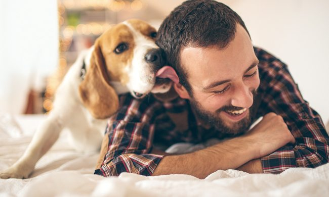 How Your Pet May Improve Your Health