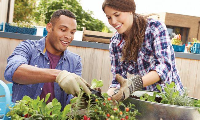 Urban Gardening - Not everyone has a backyard, roof or balcony.