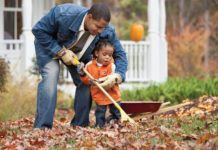 6 Tips to Prepare Your Lawn for Winter | Family Life Tips Magazine