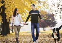 Fall dog walking is very rewarding | Family Life Tips