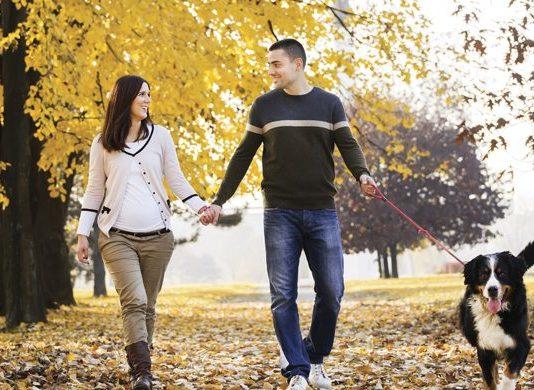Fall dog walking is very rewarding | Family Life Tips