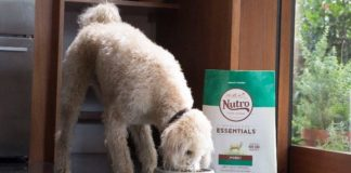 NUTRO. FEED CLEAN™