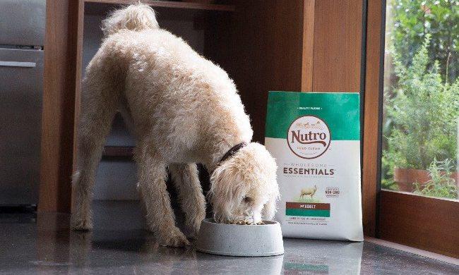 NUTRO. FEED CLEAN™