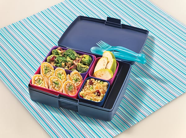 Bento Box Lunch | Family Life Tips Magazine