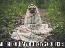 Meme: Me, Before My Morning Coffee   Family Life Tips