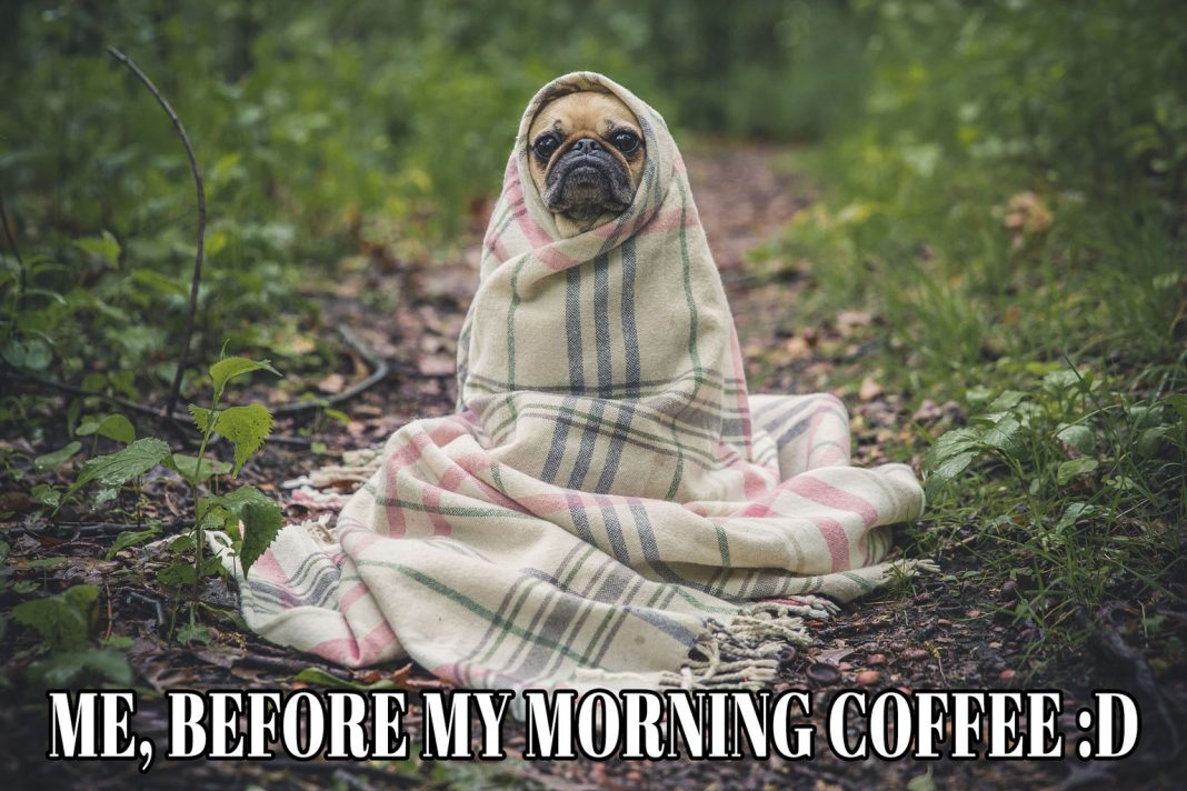 Meme: Me, Before My Morning Coffee | Family Life Tips