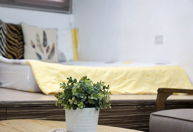 Adding a special touch like plants to your bedroom can help you get a good nights sleep