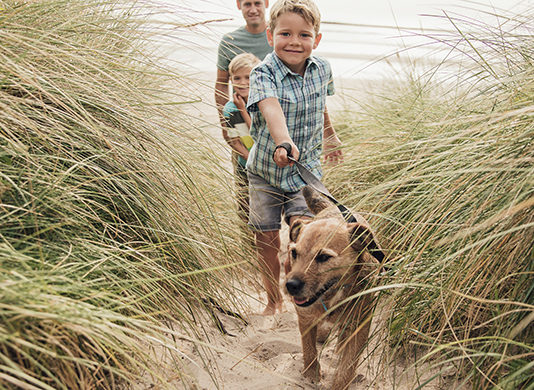 Family taking dog for a walk on beach   Family Life Tips Magazine