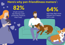 How-to Make Communities More Pet-Friendly | Family Life Tips Magazine