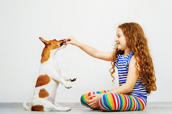 Little Girl Feed Dog Treats to her Pet Dog | Family Life Tips