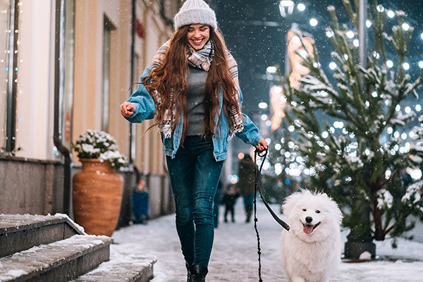 Enjoy the Holiday Season with a Stroll with Your Pet Dog