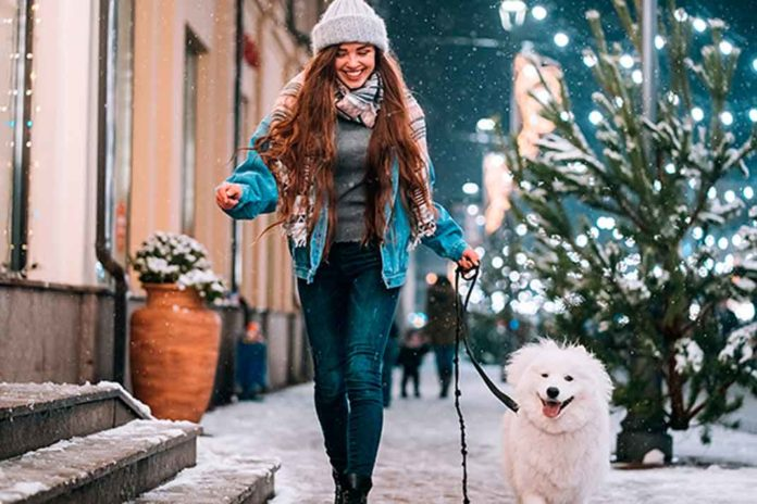 Savor Time Outdoors with Your Pet During the Holiday Season | Family Life Tips Magazine